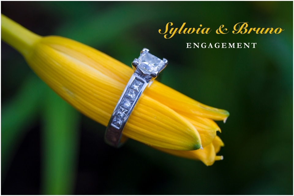 Unionville Ontario engagement Sylwia and Bruno_3599.jpg
