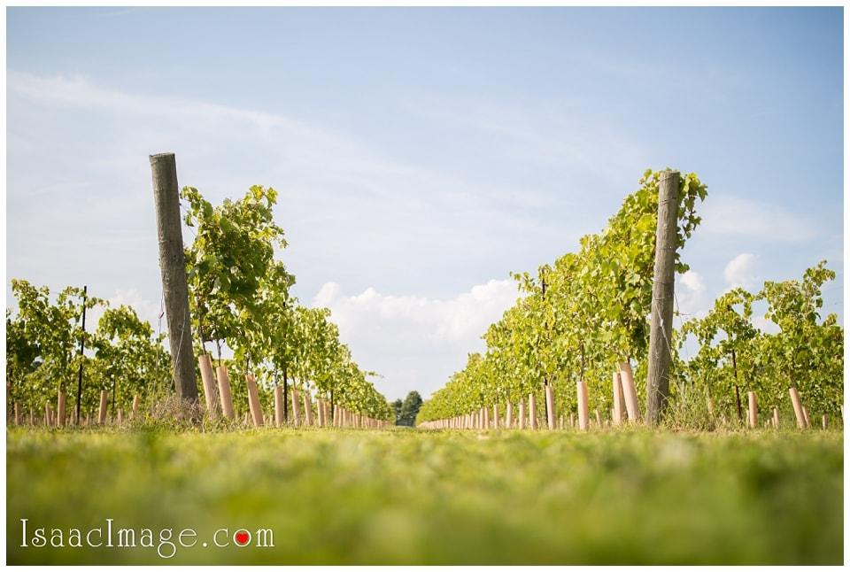 Bonnieheath estate lavender winery Engagement_3380.jpg